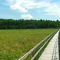 Kładka prowadząca przez bagna do Jeziora Moszne #jezioro #rezerwat #Moszne #kładka #bagno #bagna