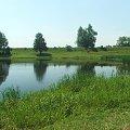 Okolice wsi Borek #Borek #Strzałka #bajoro
