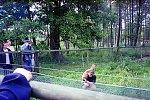 http://images2.fotosik.pl/127/86f7b2057e7b3b67m.jpg
