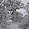 Zima 2005, Hołowczyce #zima #śnieg #zaspa #biel #czerń