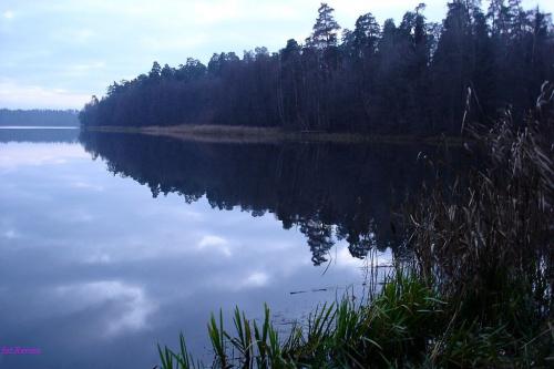 Jezioro Jegocinek #JezioroJegocinek #Mazury #Rower #Remes #PuszczaPiska #Pisz