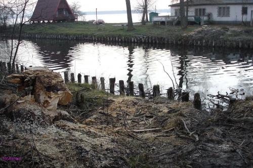 Jezioro Roś i Kanał Jegliński #JezioroRoś #KanałJegliński #Mazury #Rower #Remes #Pisz #Imionek
