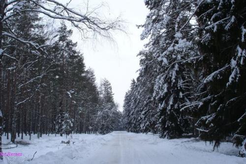 Droga Jagodzin - Wejsuny #Zima2006 #Mazury
