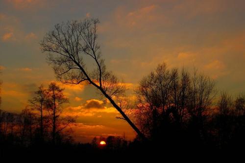 Puszcza Piska-Zachód Słońca #PuszczaPiska