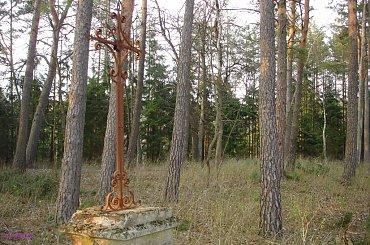 Szeroki Bór - nieczynny cmentarz ewangelicki