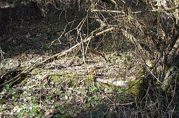 Kocioł Duży - nieczynny cmentarz ewangelicki