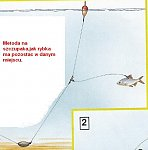 images2.fotosik.pl/77/4f1fd93d41c33707m.jpg