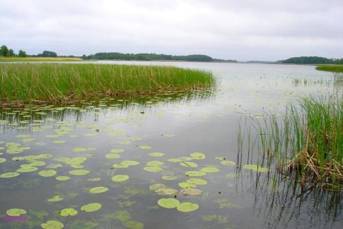 Jezioro Roś