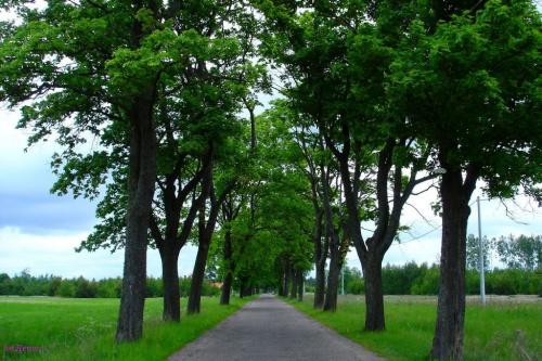 Droga do Łupek #Pisz #łupki