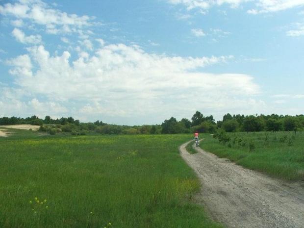 Jedziemy przez las do Bałtowa #Puławy #Azoty #Bałtów