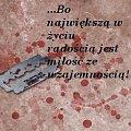 kocham �yletki i krew